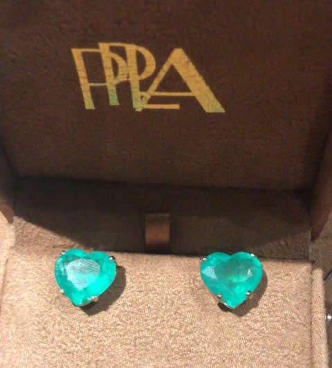 PPLA Jewels by Anne Surita