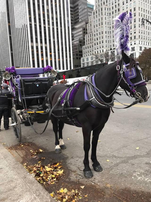 Vitrine Bergdorf Goodman - Natal em Nova York